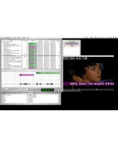 Apple VoiceQ DUB